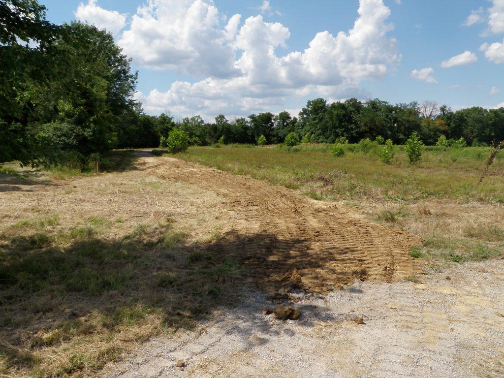 Shor Park Restoration field